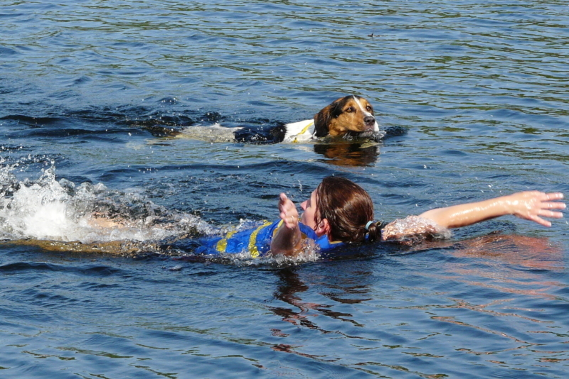 Person swimming with a dog.